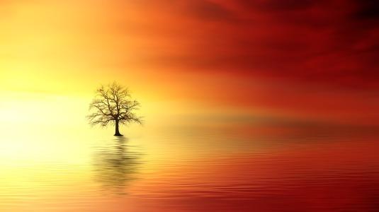 sunset-3156440_1920