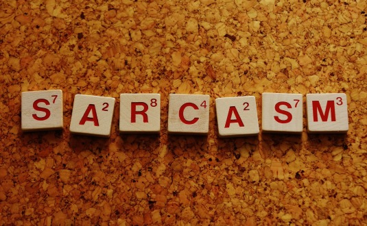 sarcasm-2015186_1920
