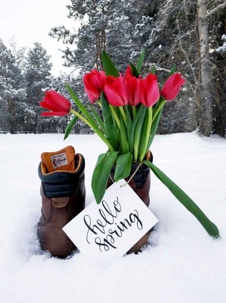 red flower bouquet on brown leather boots during snow weather